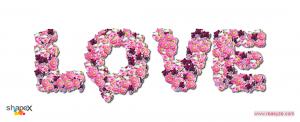 flower_4_res
