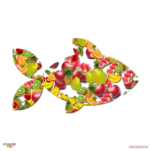 fruit_4_res