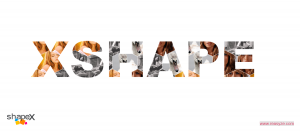 shapeX_(38)