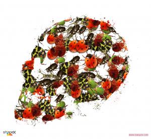 skull_2_res
